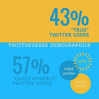 twitterverse-demographics-true-users-vs-questionable-users.jpg