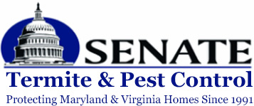senate-termite-and-pest-control